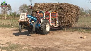 Ford 4610 Showing his Power Pulling out Sugarcane loaded Trolley