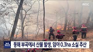 동해에서 산불 발생, 임야 0.3ha 소실