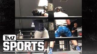 Logan Paul Brutalizes Opponent In Boxing Sparring Sesh   TMZ Sports