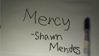 Shawn Mendes - Mercy (Animation Cover by Schwaa)
