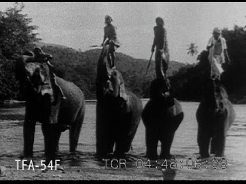 Charming Ceylon 1931
