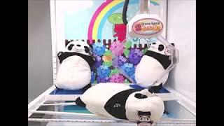 Toreba Squishy Panda BIG Plushy
