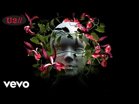 U2 - Original Of The Species
