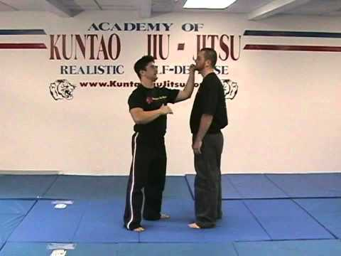 Kuntao Jiu-Jitsu Instructional Training Videos: Hammer-fist Strike Image 1