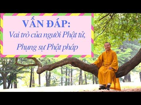 Vấn đáp: Vai trò của người Phật tử, hướng dẫn phụng sự Phật pháp