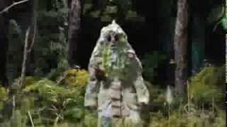 Watch Grizzly Bear Ready Able video