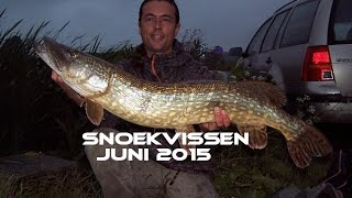 Snoekvissen met kunstaas in juni 2015 - Spring pike fishing with lures