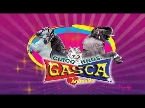 CIRCO HERMANOS GASCA, POR QUE AMAMOS EL CIRCO 2012