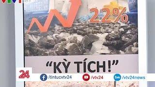"""Điểm báo: Tôm """"của ngày hôm qua"""" - Tin Tức VTV24"""