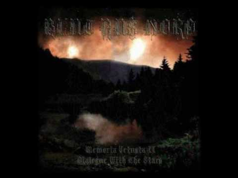 Blut Aus Nord - The Cosmic Echoes Of Non-matter Immaterial Voices Of The Fathers