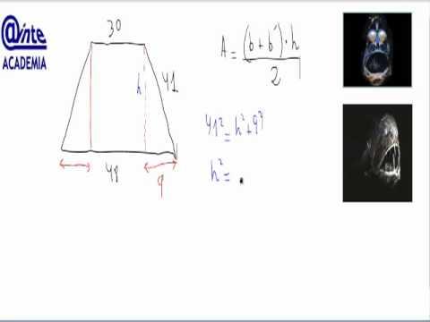Area Trapecio Isosceles AINTE Mat 2 ESO - YouTube