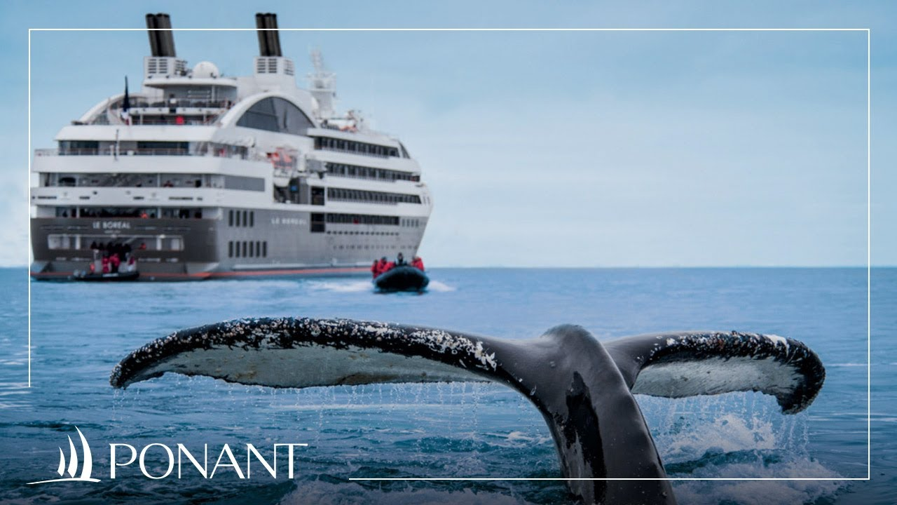 Yacht cruises: discover the treasures of the world by sea | PONANT
