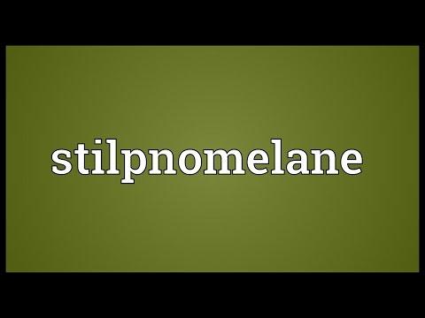 Header of stilpnomelane