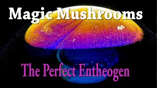 Magic Mushrooms | The Perfect Entheogen