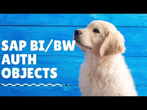 0 SAP BI Security Training What is BW/BI object a SAP Security Admin needs to know