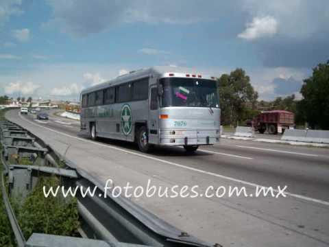 Autobuses Estrella Blanca