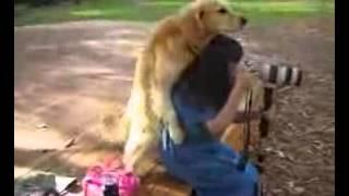 Sex,woman ha ha ha Dog!.flv