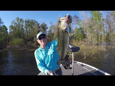 FOX Sports Outdoors SouthWEST #8 - 2016 Sam Rayburn Bass Fishing