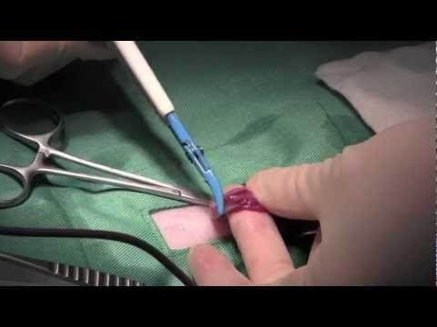 cat spay 9min no edit   japanese veterinarian