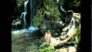 Watch Stevie Wonder The Secret Life Of Plants video
