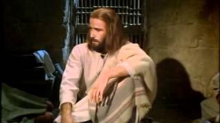 LA BIBLIA LA HISTORIA DE JESUS PARA NIÑOS ®