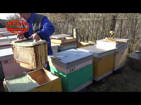 Приспособления для пчеловодства своими руками фото 29