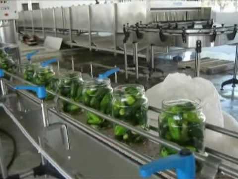 Tecnoceam Cucumber Grading, Processing and Filling Line