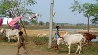 Zero line.... India Bangladesh border.