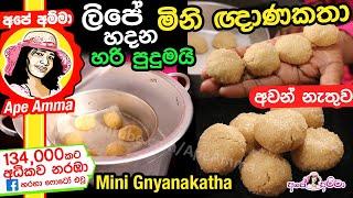 Mini Gnyanakatha by Apé Amma