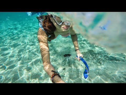 Cozumel, Mexico   Gopro Hero 4 Silver   Best Snorkeling And Scuba Diving