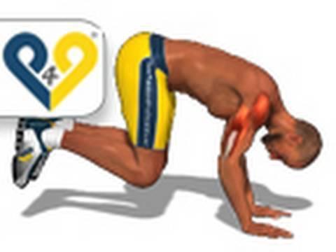 Treino peito tríceps e ombros Music Videos