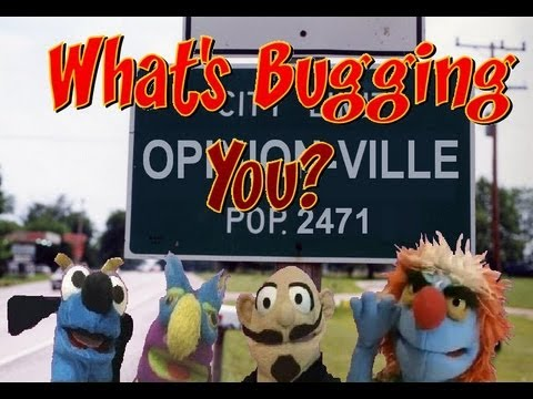Opinion-Ville: What's Bugging You?