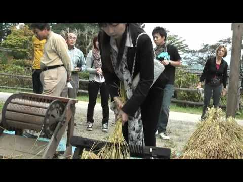 高山市 「飛騨民俗村 飛騨の里」 ~昔の脱穀体験~