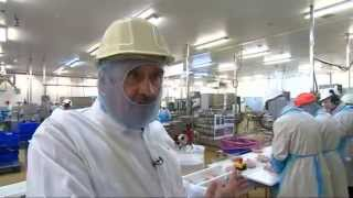 Inside the Cargill Chicken Plant in Hereford
