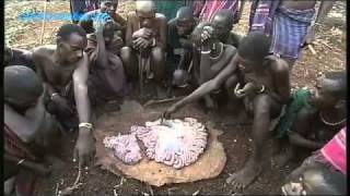 Shamans and Witchdoctors - Tribal Rites