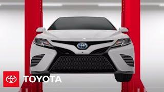 Toyota Hybrid Maintenance and Longevity