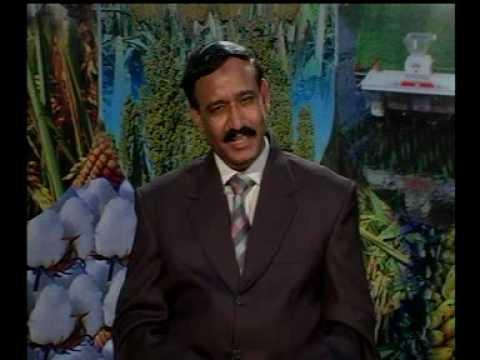 Pointer dog's treatment very interesting call Pakistan Dr. Ashraf Sahibzada