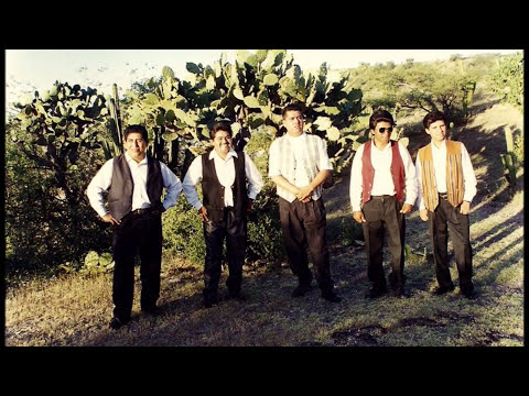EL CORRIDO DE LOS TAPIA (GRUPO LOS CORA) ACATLAN PUEBLA MEXICO
