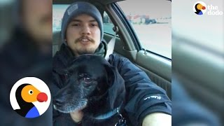 Pizza Guy Rescues Dog During A Delivery | The Dodo
