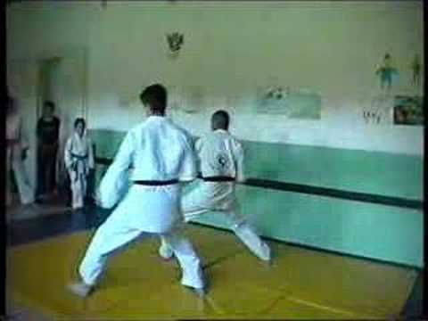 Shinbukan Jujutsu - Karate techniques Image 1