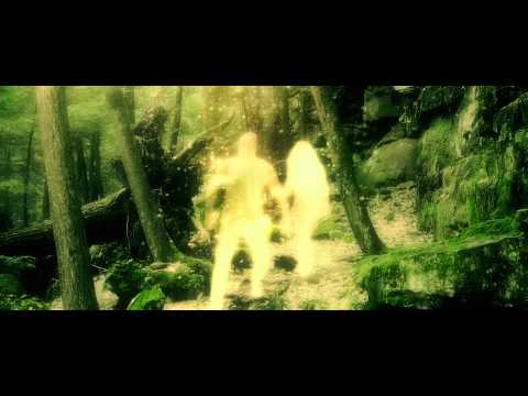 """Picture of a Tree That Doesn't Look Okay"" - TWIABP (official video)"