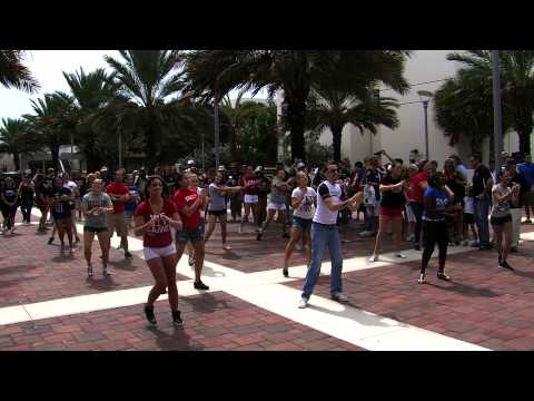 FAU Flash Mob - Brand New Day