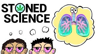 Two Stoned Guys Try To Explain The Respiratory System | STONED SCIENCE