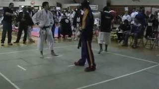 Shotokan vs Freestyle
