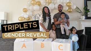 TRIPLETS GENDER REVEAL | This Byrds Nest