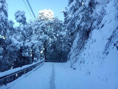 Snowfall in Shimla , Himachal Pradesh