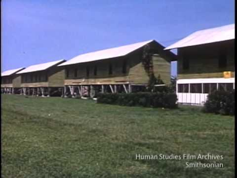 1958 Tiquisate -- Banana Plantation Part 1 - Guatemala