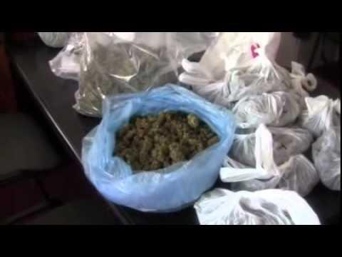Policjanci na tropie handlarzy marihuaną