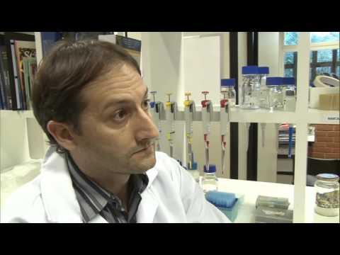 Ciência estuda as reações dos indivíduos a medicamentos -  Jornal Futura - Canal Futura