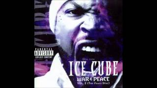 Watch Ice Cube Gotta Be Insanity video